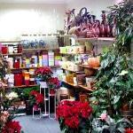 Оборудование и мебель для цвветочного магазина