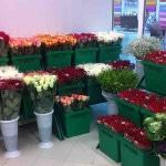 Цветочный магазин - как открыть