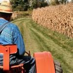 Фермерское хозяйство с нуля