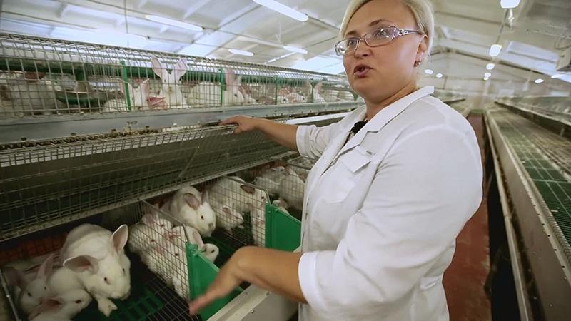Персонал кролиководческой фермы