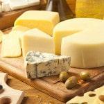 Свой бизнес: сыроварня