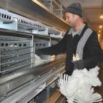 Птицеводство как бизнес в России