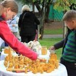 Пчеловодческое хозяйство: сбыт продукции