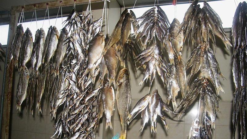 Вялка рыбы бизнес план скачать бизнес план овощного магазина