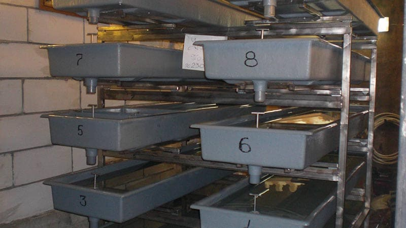 Выращивание раков в закрытых помещениях