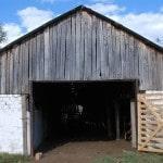Разведение коров в домашних условиях: с чего начать