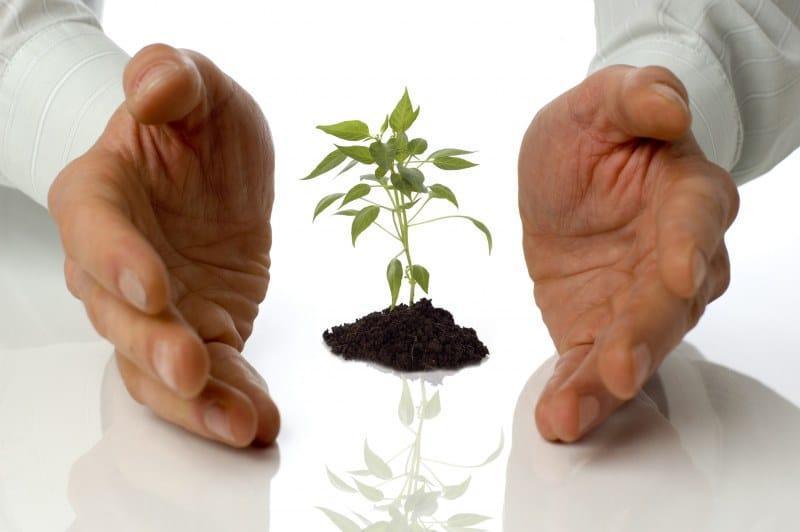 как выиграть грант на открытие малого бизнеса