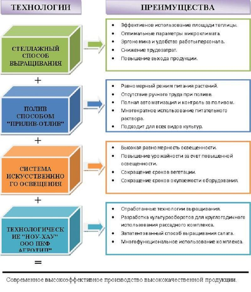 бизнес план выращивание зелени на гидропонике