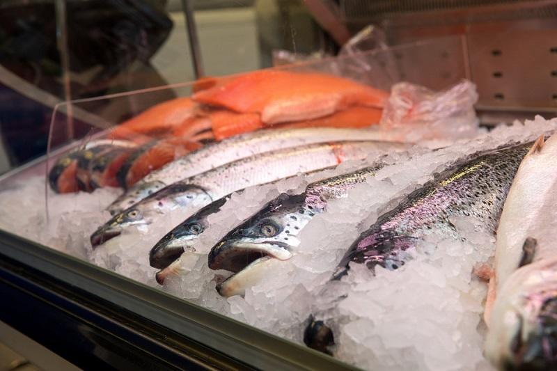 Рыбный бизнес с нуля план деревообрабатывающий цех бизнес план