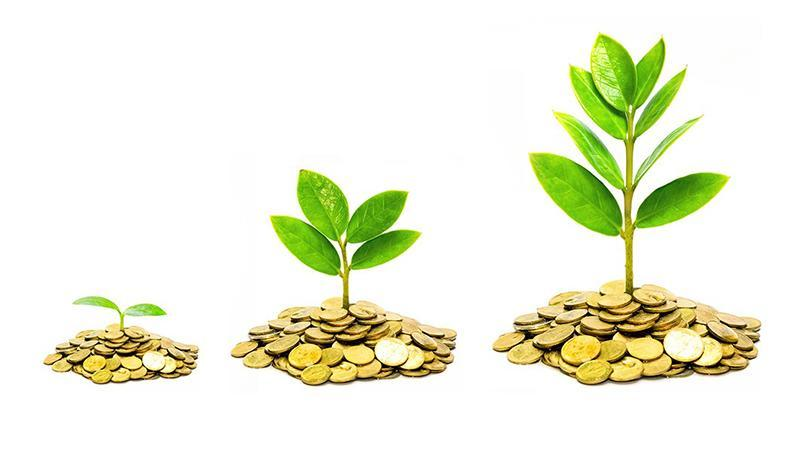 Как стать инвестором: нюансы