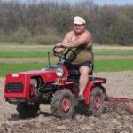 Оборудование для выращивания чеснока на продажу