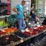 Выращивание малины в домашних условиях как бизнес