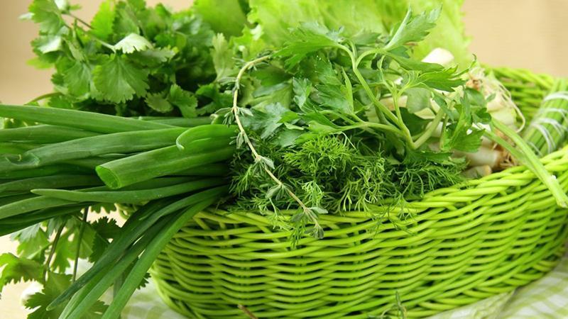 Выращивание зелени как бизнес
