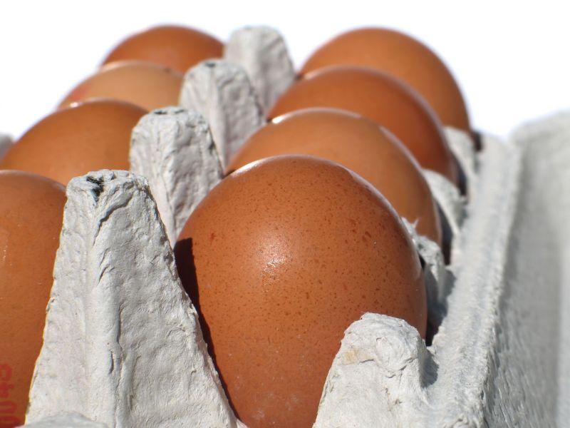 Перепродажа яиц как бизнес