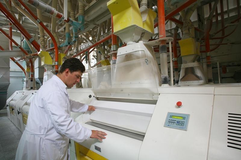 бизнес производство макаронных изделий