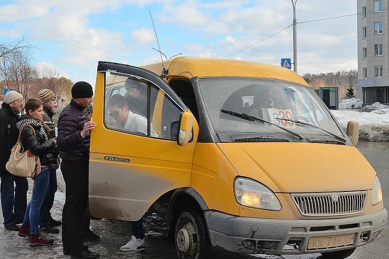 как организовать бизнес маршрутное такси