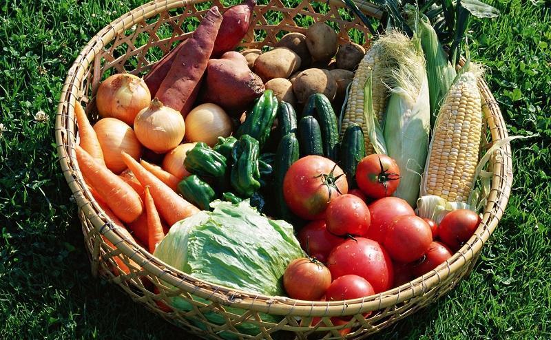 какие документы нужны для торговли овощами и фруктами