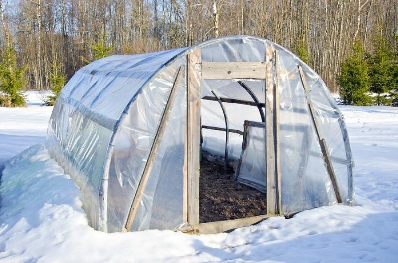 оборудование для питомников растений