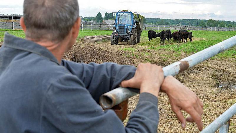 Свой рентабельный бизнес в сельском хозяйстве
