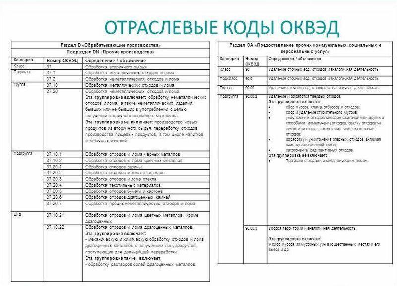 общероссийский классификатор видов экономической деятельности