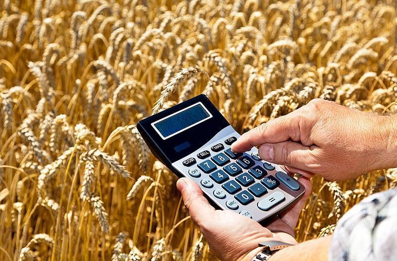 земельный налог относится к категории налогов