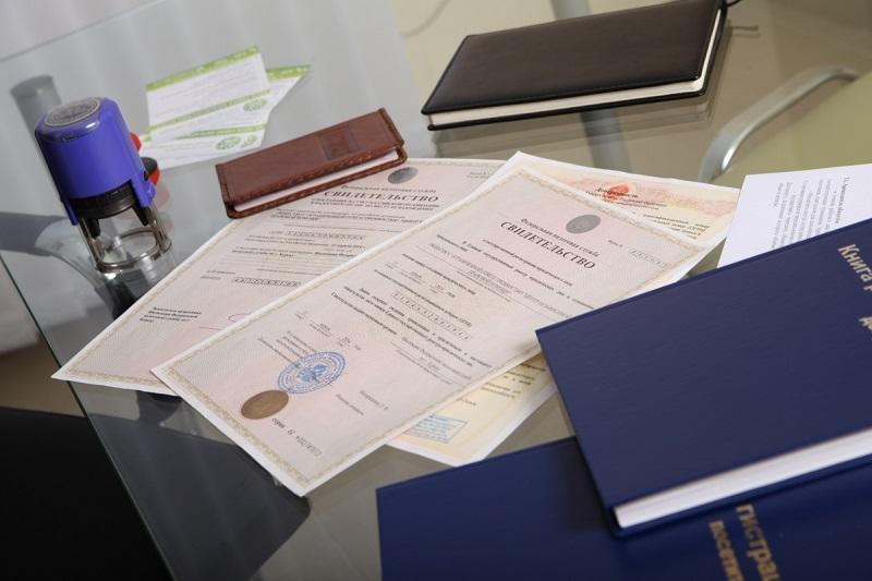 классификация видов предпринимательской деятельности