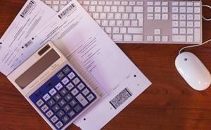 сроки сдачи отчетов ООО на общей системе налогообложения (ОСНО)