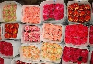 франшиза цветочный магазин